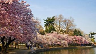 река, весна