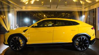 Urus, жёлтый, Lamborghini, 2019
