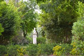 скульптура, деревья