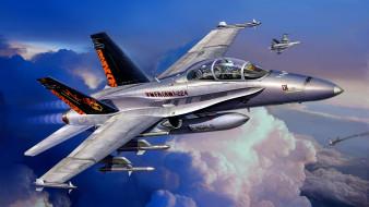 двухместный учебно-боевой вариант FA-18C, McDonnell Douglas, штурмовик, FA-18D, Hornet Wild Weasel, американский палубный истребитель-бомбардировщик