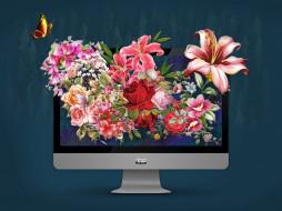 цветы, фотошоп, монитор, monitor, apple, mac, мир, photo