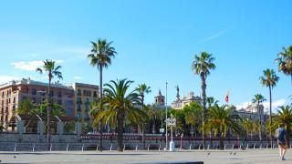 барселона, города, барселона , испания, фонарь, здание, пальма