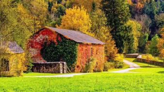 дом, дрова, осень