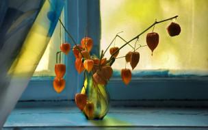 букет, ваза, окно