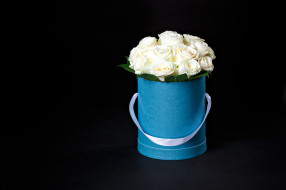 цветы, розы, букет, бутоны