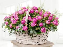 цветы, букеты,  композиции, букет, корзинка, розы