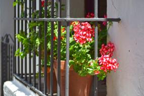 решетка, балкон