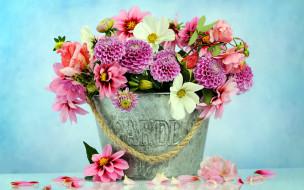 цветы, букеты,  композиции, космея, георгины