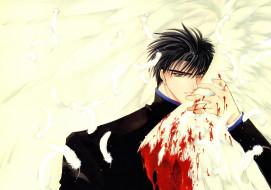парень, кровь, крылья, перья