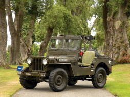 Willys, M38, Jeep, 1950