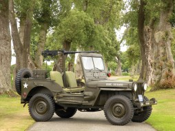 Jeep, 1950, M38, Willys