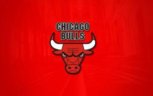 спорт, эмблемы клубов, chicago, bulls, логотип, фон