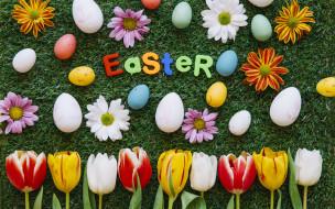 Травка, Цветы, Тюльпаны, Хризантемы, Праздник, Яйца, Пасха