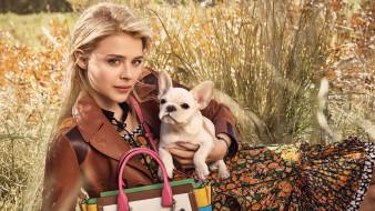 собака, улыбка, актриса, блондинка, трава, сумка, куртка