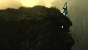 Shadow of the Colossus, адвенчура, ролевая