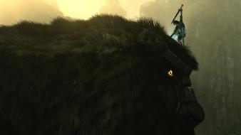 видео игры, shadow of the colossus, shadow, of, the, colossus, ролевая, адвенчура