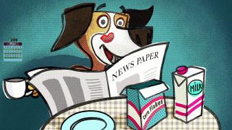 газета, собака, 2018