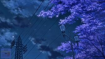 фонарь, дерево, 2018
