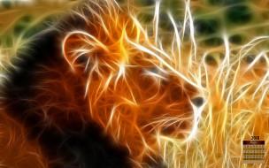 лев, профиль, взгляд, 2018