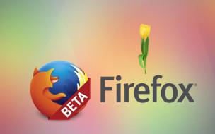 компьютеры, mozilla firefox, фон, цветы, лепестки, логотип, тюльпаны