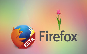 логотип, тюльпаны, цветы, фон, лепестки