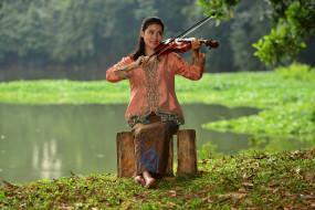 музыка, -другое, девушка, скрипка