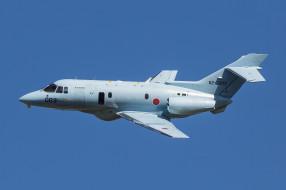 raytheon u-125a, авиация, военно-транспортные самолёты, транспорт, войсковой