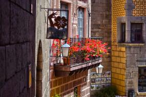 цветы, балкон