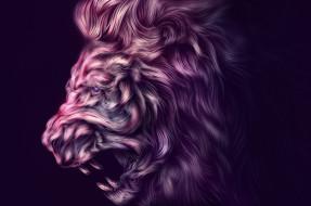 Ahmed Karam, лев, арт, фон, хищник, животное, профиль