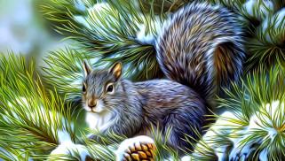 зима, снег, сосновая ветка, живопись, пушистый хвост, рисунок, хвоя, рендеринг, белка