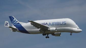 a300, airbus, грузовой самолет, super transporter, 600st, реактивный, широкофюзеляжный