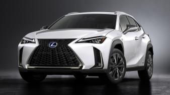 Lexus, белый, 2019, Sport, F, UX