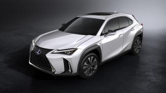 2019, Sport, Lexus, UX, F, белый