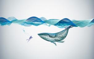 Creative, Underwater, Graphics, Illustration, Whale