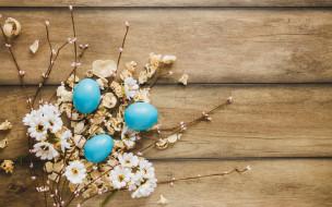 праздничные, пасха, happy, яйца, крашеные, eggs, ромашки, wood, decoration, весна, tender, easter, цветы, flowers, spring