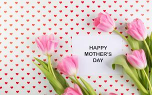 spring, flowers, розовые, fresh, pink, цветы, tender, tulips, тюльпаны