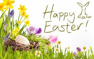 праздничные, пасха, весна, корзина, цветы, happy, солнце, easter, нарциссы, трава, decoration, eggs, flowers, spring, небо