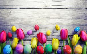 праздничные, пасха, весна, decoration, colorful, wood, easter, тюльпаны, tulips, spring, яйца, крашеные, eggs, flowers, happy, цветы