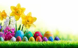 праздничные, пасха, весна, трава, небо, солнце, easter, нарциссы, happy, цветы, яйца, крашеные, spring, flowers, eggs, decoration