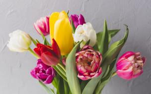 fresh, colorful, букет, flowers, цветы, spring, весна, тюльпаны, tulips, bright, яркие