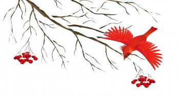 векторная графика, животные , animals, птичка, снег, ветка