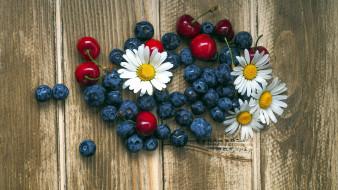 еда, фрукты,  ягоды, ромашки, вишни, черника