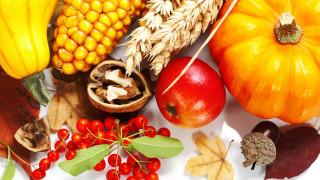 еда, фрукты и овощи вместе, яблоко, кукуруза, тыква
