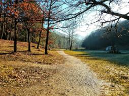 природа, парк, осень