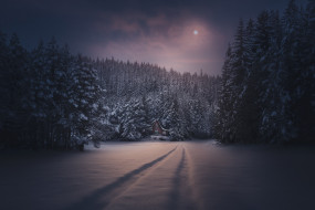природа, дороги, ночь, снег, зима, луна, домик, лес, следы
