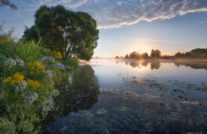 природа, восходы, закаты, трава, река, цветы, дерево, небо, вода