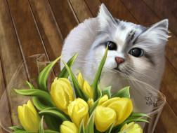 букет, тюльпаны, кошка