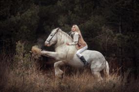 лошадь, наездница, блондинка, девушка