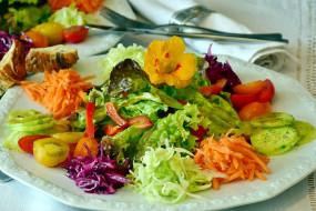 настурция, овощи, салат