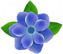 векторная графика, цветы , flowers, цветок, фон, лепестки